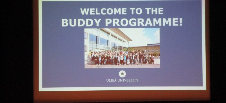 Buddy Program Opening