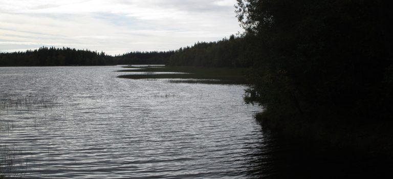 1 Monat in Schweden: Sommer und Herbst