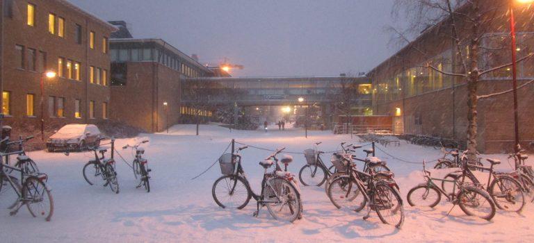 3 Monate in Umeå