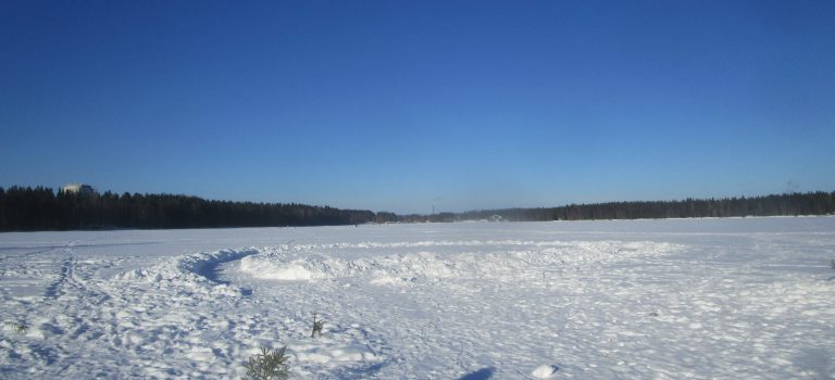7 Monate in Umeå: Immer noch tiefer Winter